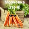 Фото Danil_Ryazanov