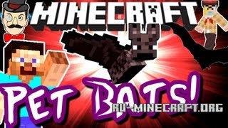 Скачать Pet Bat Mod для Minecraft 1.6.4
