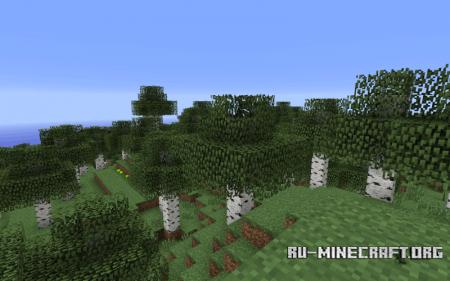 Биом Берёзовый лес в Minecraft