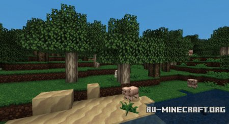 ������� Derivation ��� Minecraft 1.5
