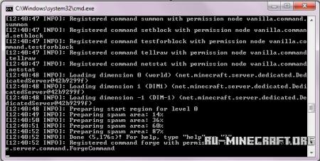 Успешный запуск сервера Cauldron