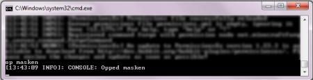 Установка OP из консоли Майнкрафт