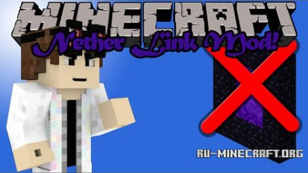 Скачать Pocket Nether Link для Minecraft 1.8.9