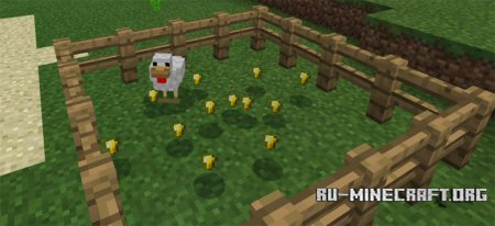 Скачать Golden Chicken для Minecraft PE 1.0.0