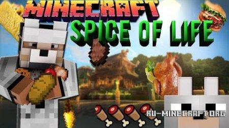 Скачать The Spice Of Life для Minecraft 1.6.4