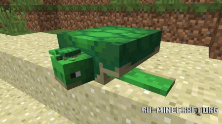 Черепахи в Minecraft 1.13