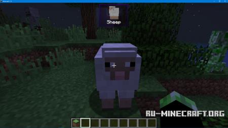 Скачать WorldInfo для Minecraft 1.13