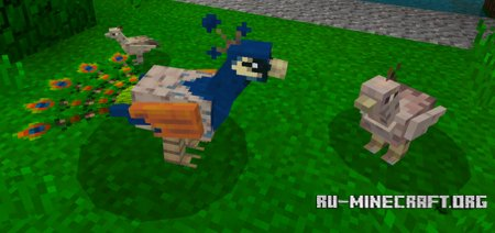 Скачать Peafowl для Minecraft PE 1.6