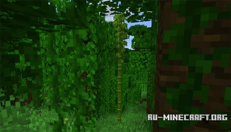 Бамбук в Minecraft 1.14 (1)