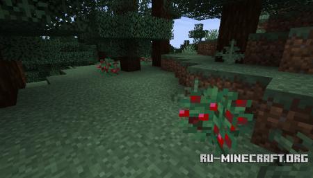 Куст сладких ягод в Minecraft 1.14 (1)