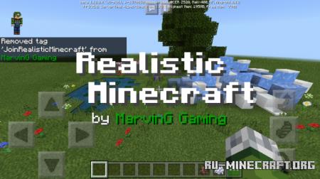Скачать Realistic Minecraft для Minecraft PE 1.12