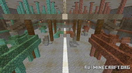 Скачать Capture the Flag Arena для Minecraft