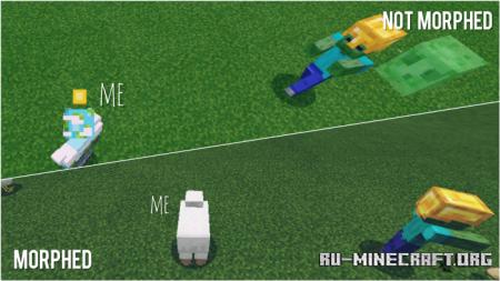 Скачать Visual Morph для Minecraft PE 1.12