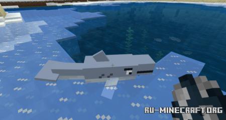Скачать Shark для Minecraft PE 1.14