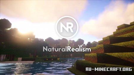 Скачать Natural Realism [16x] для Minecraft 1.12