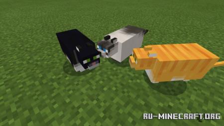 Скачать Fat Cats для Minecraft PE 1.14