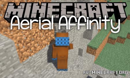 Скачать Aerial Affinity для Minecraft 1.16