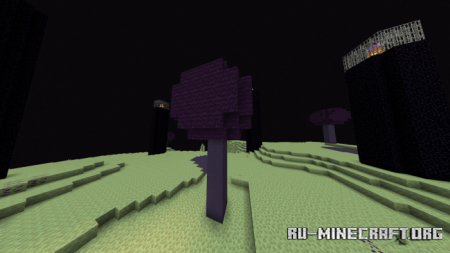 Скачать End Update для Minecraft PE 1.16