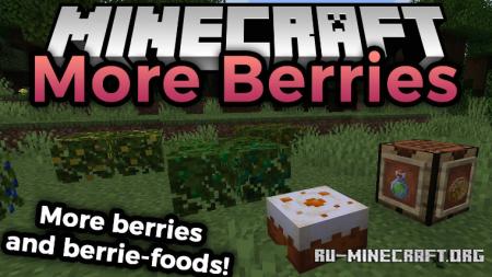 Скачать More Berries для Minecraft 1.16.1