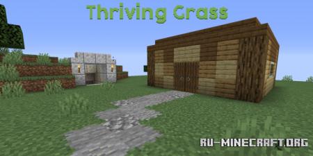 Скачать Pablo's Thriving Grass для Minecraft 1.16