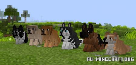 Скачать Better Dogs для Minecraft 1.16