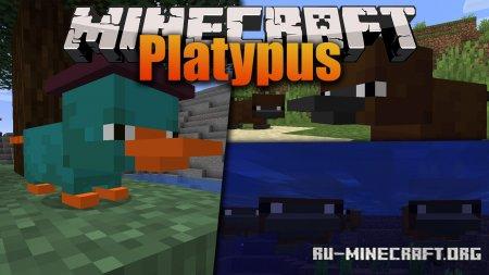 Скачать Platypus для Minecraft 1.16.1