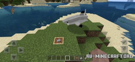 Скачать Shark Biology: The Classics для Minecraft PE 1.16
