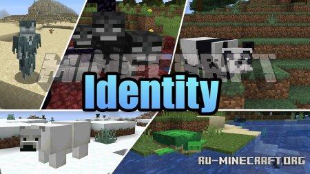 Скачать Identity для Minecraft 1.16.4