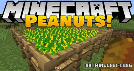 Скачать Peanuts для Minecraft 1.16.4