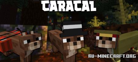 Скачать Caracal для Minecraft 1.16.5
