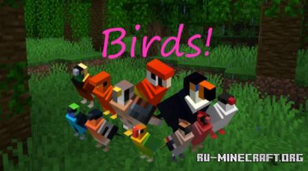 Скачать 130 colorful birds skins для Minecraft 1.12