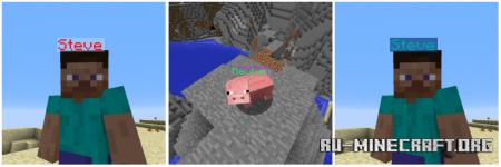 Скачать Name Pain для Minecraft 1.17