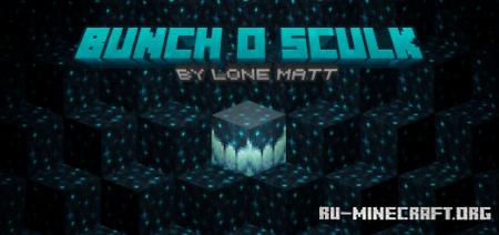 Скачать Bunch o' Sculk для Minecraft PE 1.17