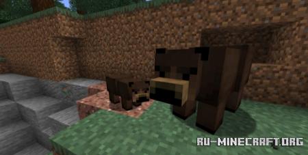 Скачать Grizzly Bear для Minecraft 1.17.1