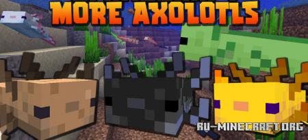Скачать More Axololts для Minecraft 1.17.1