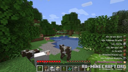 Скачать Pick Up Notifier для Minecraft 1.17.1
